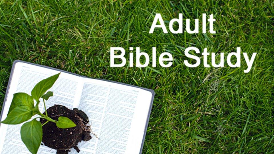 Thursday Adult Bible Study