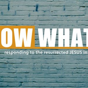 Transformed Life Through Discipleship